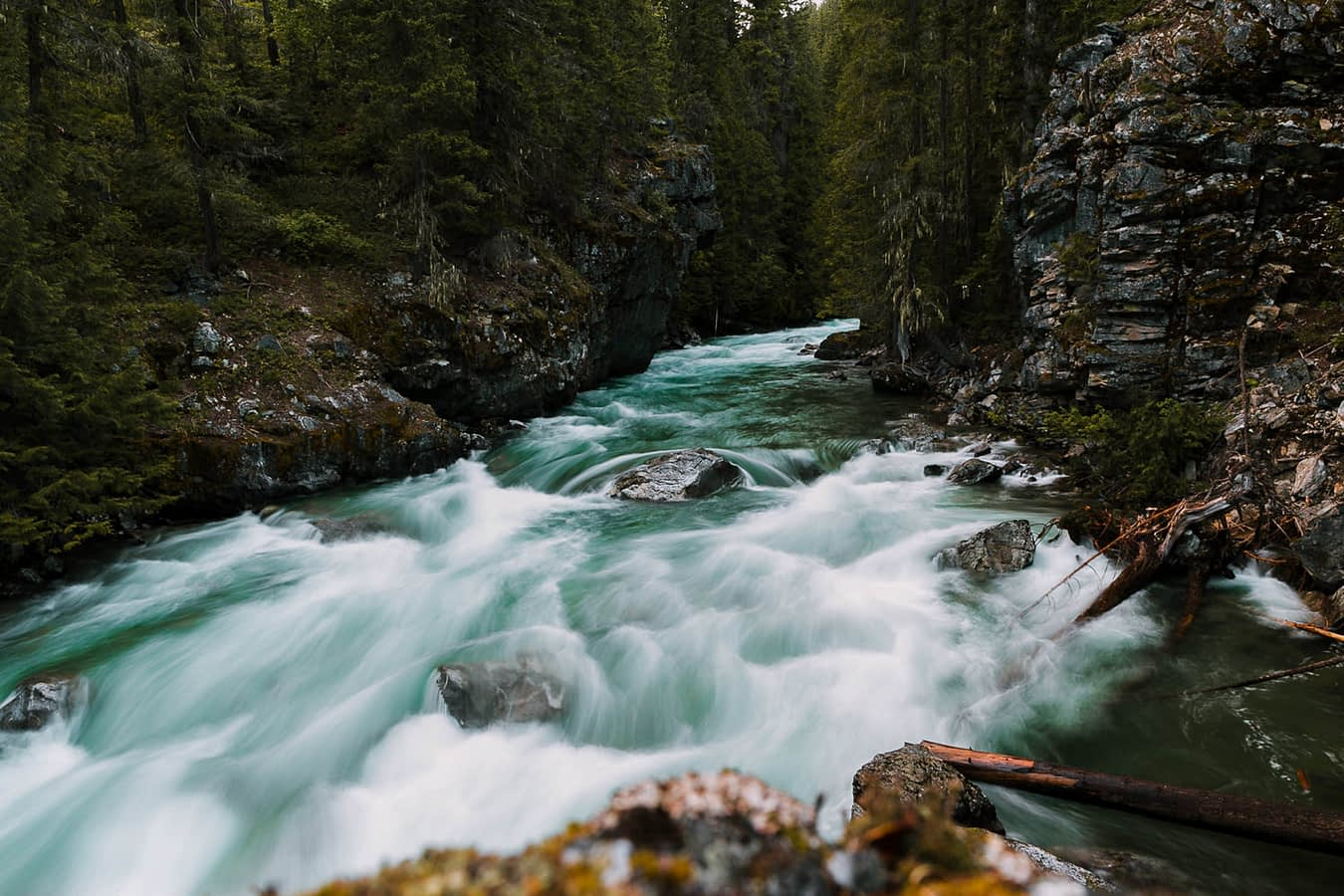 rushing river North Cascades National park