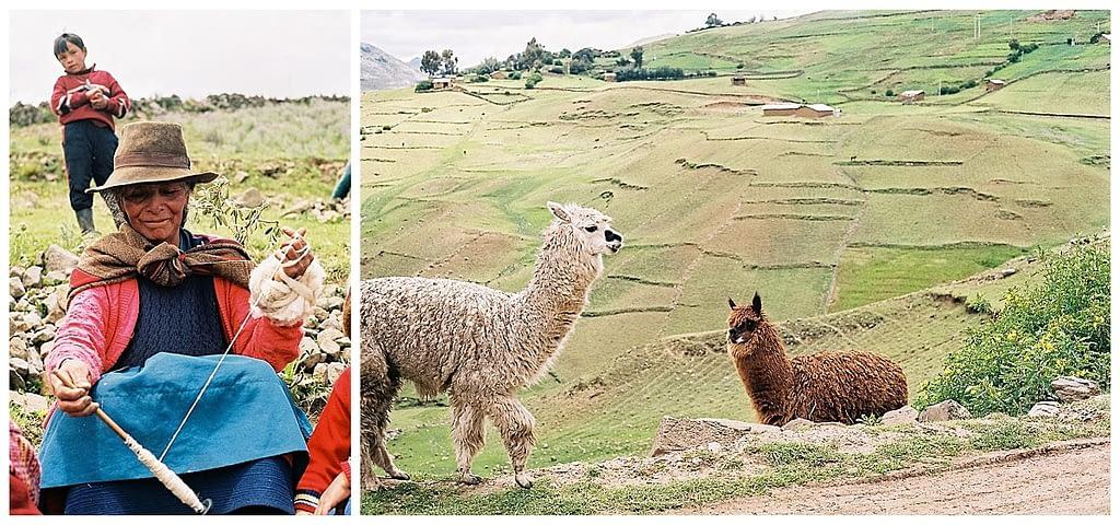 woman spins yarn and llamas in peru on film