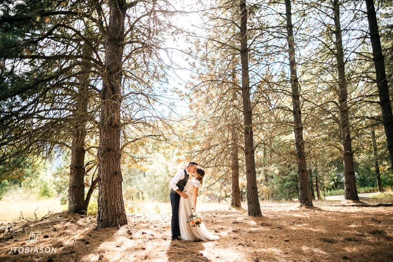 bride and groom kiss under trees at brown family homestead wedding